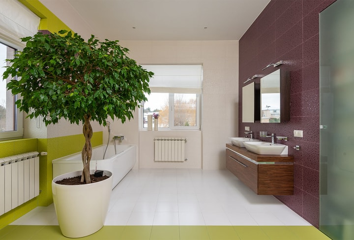 Violetinė spalvos namų kambaryje 2022 metu