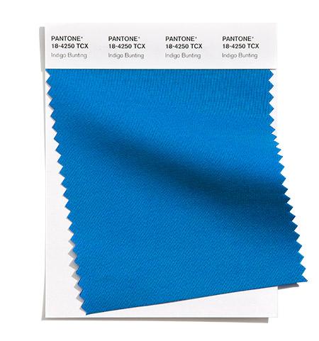 Mėlyna spalva namų interjerui