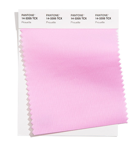 Rožinė gaivi spalva populiari namams